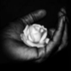 Copia di Mano Rosa.jpg