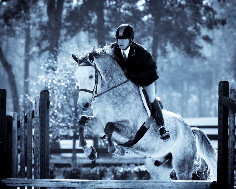 equestrian_houston_photography 3.jpg