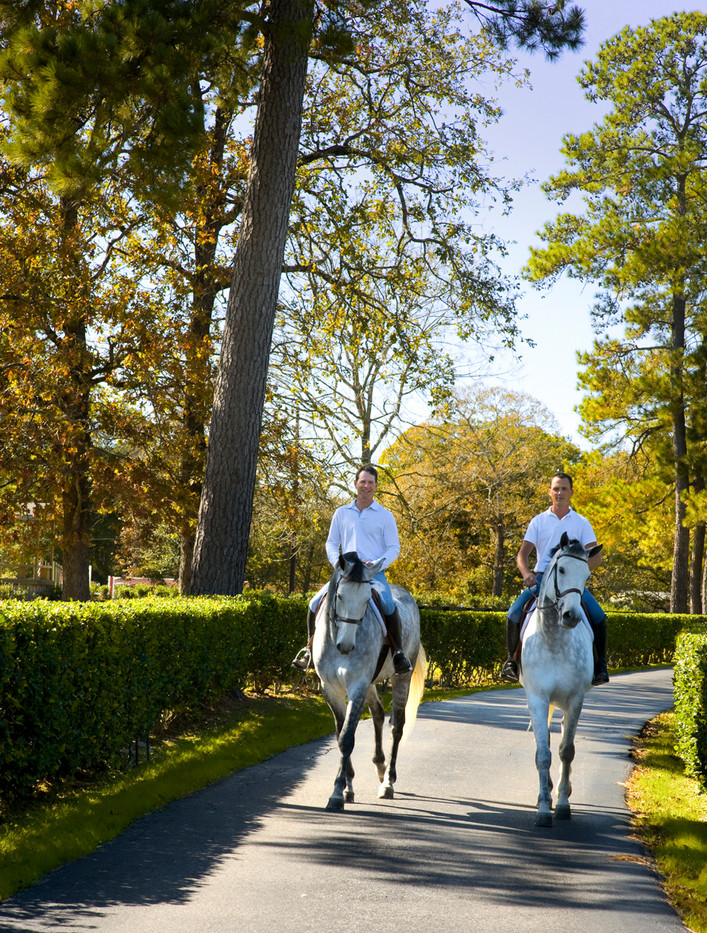 equestrian_houston_photography 2.jpg