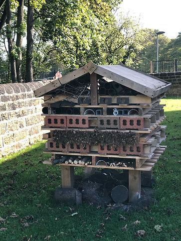 Bug House.jpeg