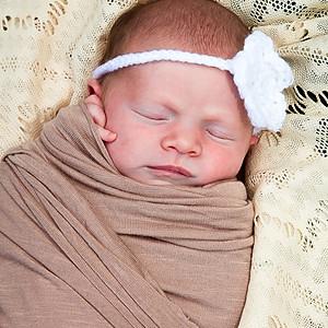 Abigail Newborn Session