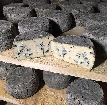 Blue Cheese square.jpg