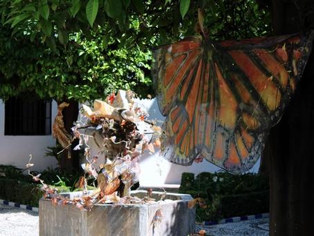 Lucila Veloz traslada la mariposa monarca a Córdoba