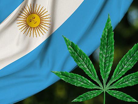 Argentina acaba de legalizar el autocultivo para uso medicinal y la venta de aceites en farmacias