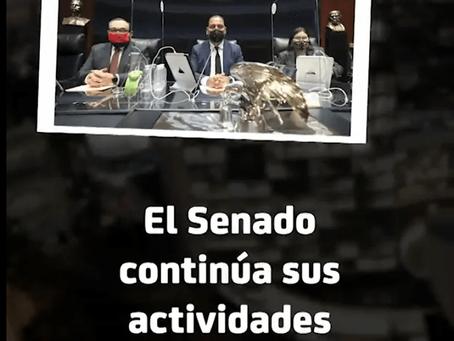 El Senado continua sus actividades