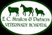 straitons logo.png