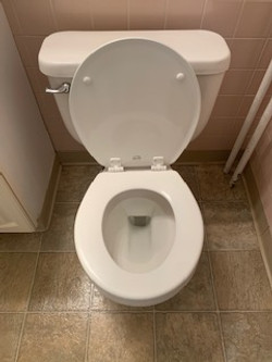 Result of Cleaned Toilet