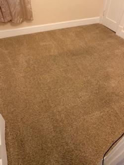 Result of Cleaned Carpet