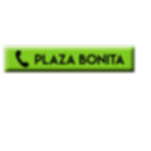 PLAZA PHONE BUTTON.png