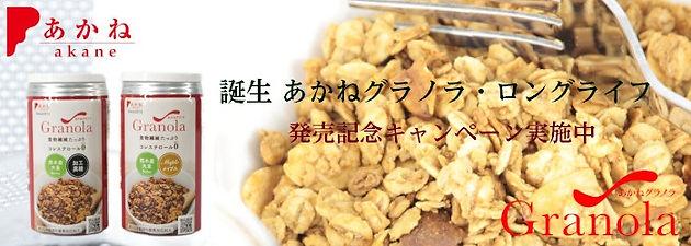 Top_bunner_03_01.jpg