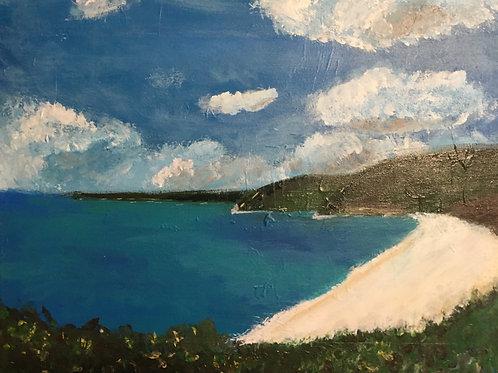 Dingo Beach Albany