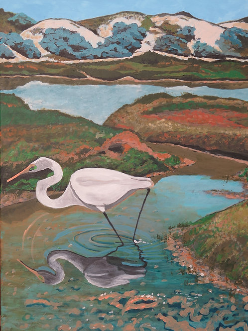 Dongara Egret