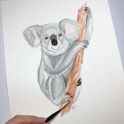 Koala for Valentine's Day Card Fundraiser