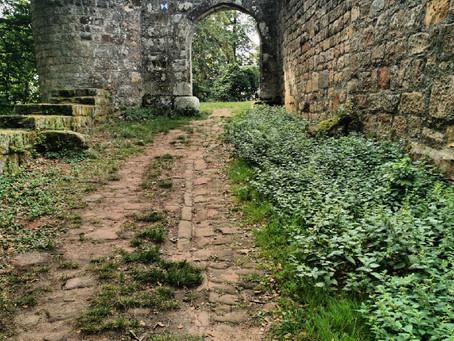 Pfälzer Waldpfad, Etappe 4: Grüne Einsamkeit zwischen sterbenden Orten