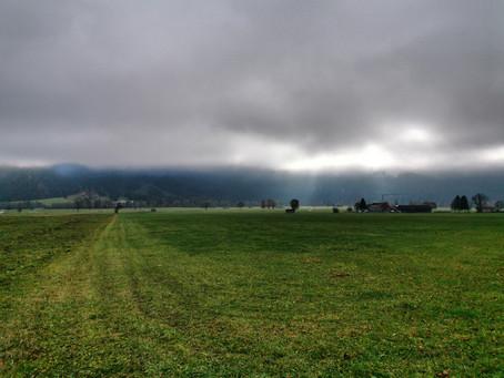 Im Nebel auf die Hornburg