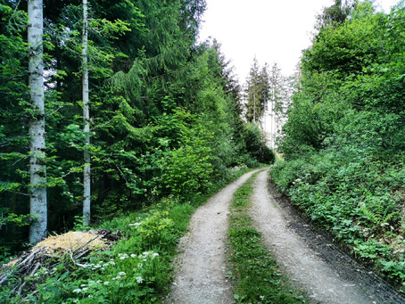 Grüne Wiesen und keine Touristen in Oberstdorf