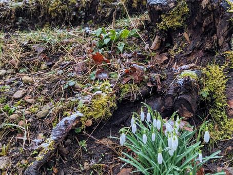 Im Schneeregen an den Wertachstauseen in Frankenhofen