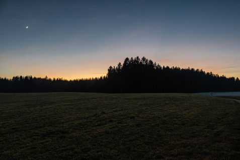 Dezemberland. Near Eggstätt in Bavaria.