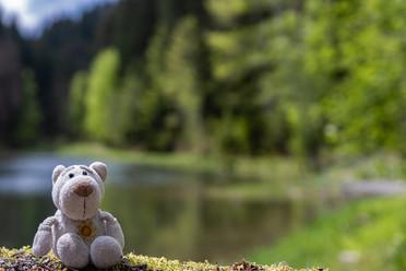 Mai. Fredi sitzt auf der Staumauer am Weiher bei Westerhofen. Er freut sich darüber dass es still. Und warm.
