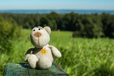 September. Fredi sitzt in der Herbstsonne bei Peißenberg.