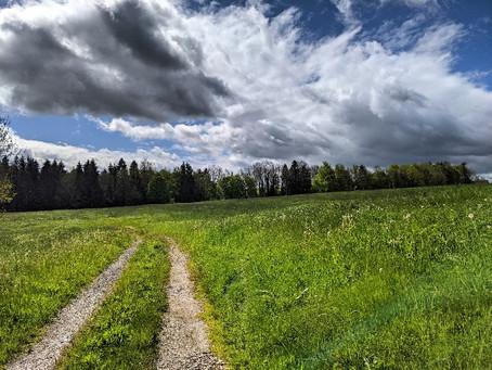 Bei einer vergessenen Bauernfliehburg bei Heimenkirch im Mai