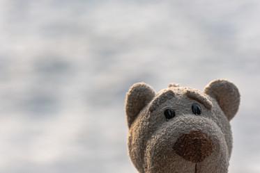 18.01.2020. Fredi freut sich über den Schnee in Ruderatshofen.