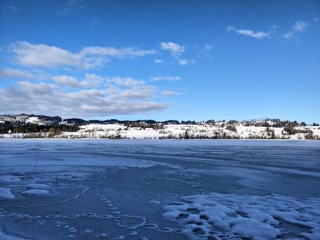 Eisiger Wind am Niedersonthofener See