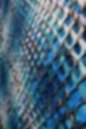 Cambria (Detail 2)