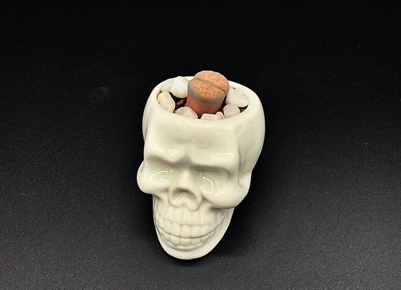 Skull 'n Brains Planter