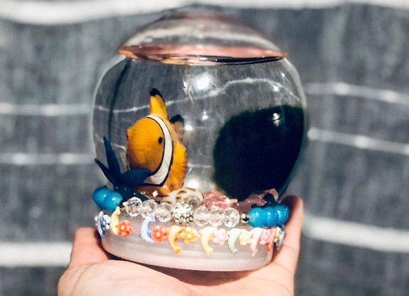 Marimo Water Globe Kit