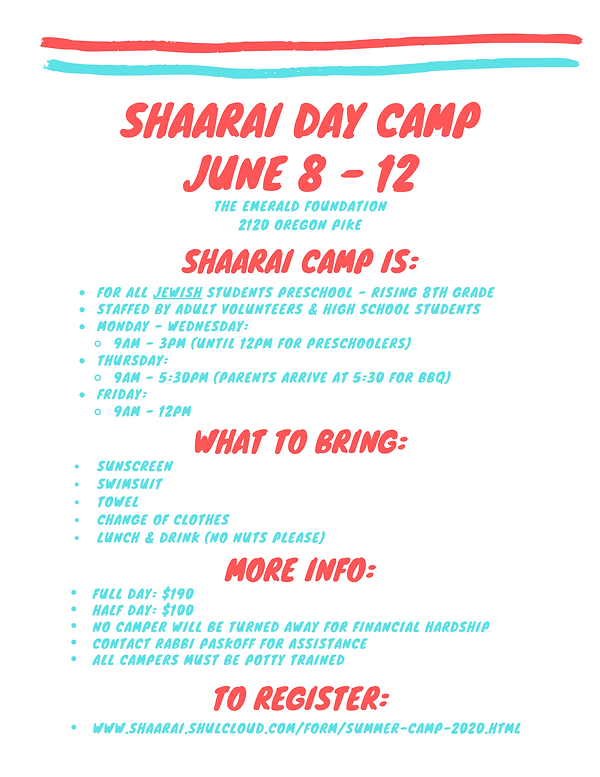 Shaarai Day Camp One Pager.png