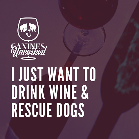 Drink wine and rescue dogs (1).png