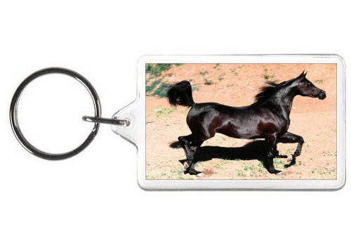 BLACK BEAUTY HORSE KEY CHAIN