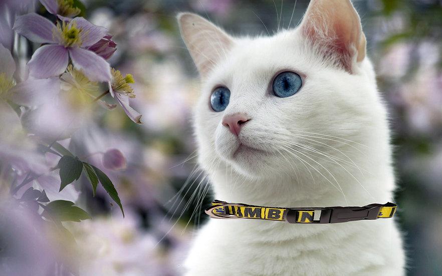 I AM BLIND SIGHT IMPAIRED CAT COLLAR