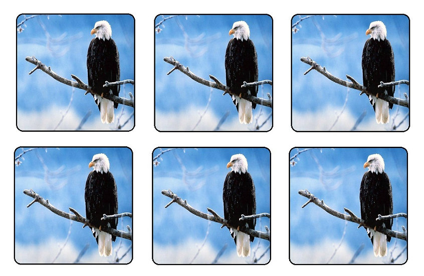 EAGLE BEVERAGE COASTERS