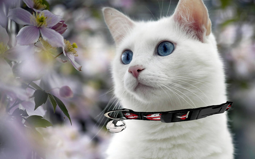 GHOSTBUSTERS CAT COLLAR