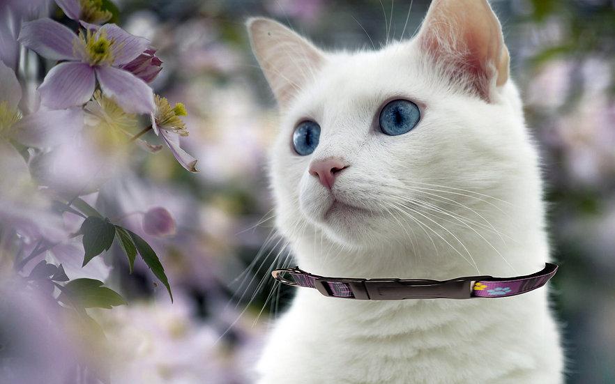 I AM DIABETIC CAT COLLAR