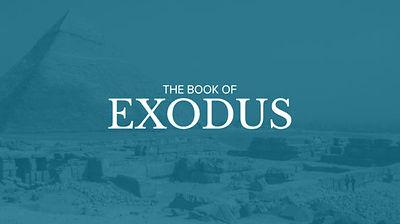 Exodus-1-574x322.jpg