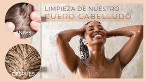 Limpieza Adecuada de un cuero cabelludo saludable según tu oleosidad