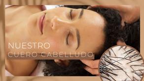 Cuero Cabelludo Saludable: Cuidados a tener en Cuenta dependiendo tu Oleosidad.
