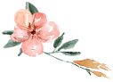 flower02.png