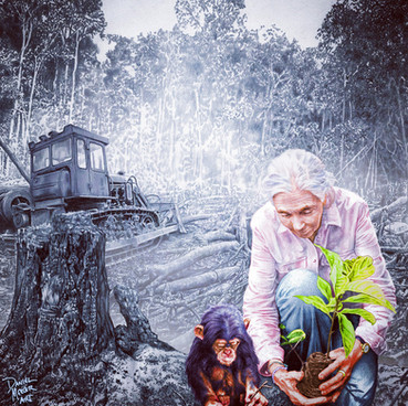 """This illustration was created in collaboration with the Jane Goodall Institute and used to raise awareness for the 2018 Innaugural World Chimpanzee Day.   """"Jane loved and approved your work and has requested that it be used on all of our media outlets for World Chimpanzee Day."""" - JGI Coordinator"""