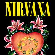Nirvana Heart Shaped Box - Daniel Mercer