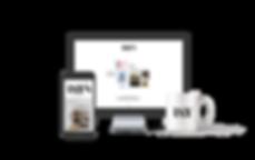 mockup_websitePresentation.png