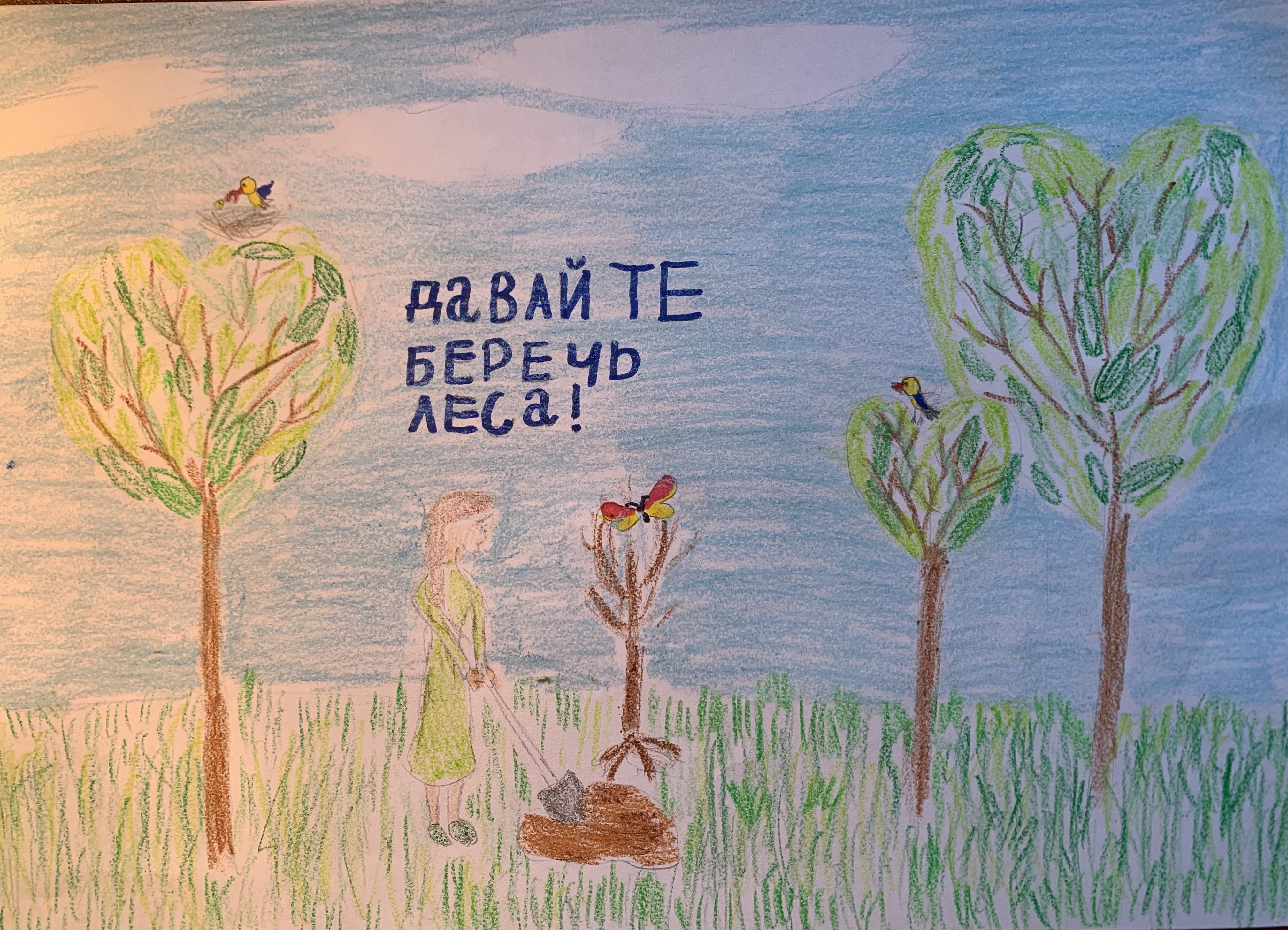Давайте беречь леса. Копанева Евгения, 7 лет. II премия