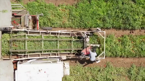 Agriculture reel