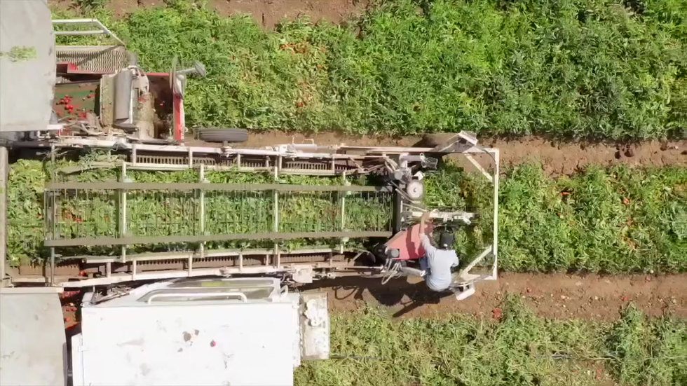Agriculture operations