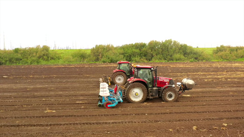 Flattening and Seeding.