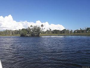 18110 Withlacoochee River.jpg