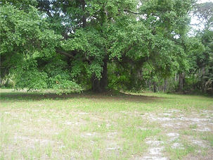 Vacant Land MLS 757978 HWY 40 W
